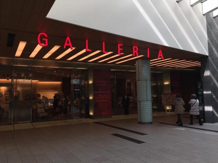 ガレリア展示-4